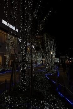 christmas_stars.jpg